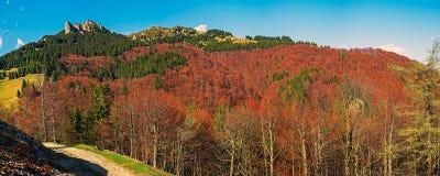 Colori di autunno nelle montagne Fotografie Stock