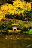 Colori di autunno in un giardino Fotografia Stock