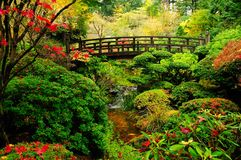 Colori di autunno in una sosta Fotografia Stock Libera da Diritti