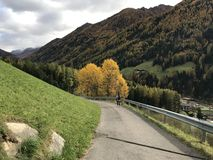 Colori di caduta in alpi italiane Una mattina di ottobre immagini stock libere da diritti