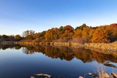 Colori di caduta con le riflessioni nel lago fotografia stock libera da diritti