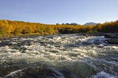 Colori di caduta lungo il riverbank fotografia stock