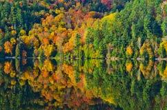 Colori di caduta riflessi in lago Fotografia Stock