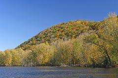 Colori di caduta sul ramo paludoso di fiume immagini stock libere da diritti