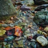 Colori di caduta, waterfull 2 Immagine Stock