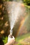 Colori di estate nel giardino dopo l'innaffiatura Rainbow fotografia stock libera da diritti