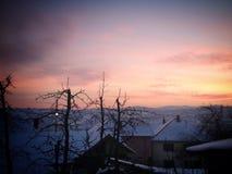 Colori di inverno Fotografia Stock Libera da Diritti
