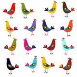 Colori differenti degli uccelli Fotografia Stock