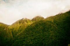 Colori dorati della natura nelle montagne Fotografia Stock Libera da Diritti
