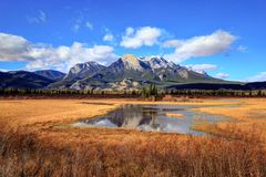 Colori dorati di autunno di Jasper National Park Fotografia Stock