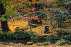 Colori giapponesi di autunno del giardino fotografia stock libera da diritti