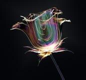 Colori il fiore di vetro isolato sul nero, la rosa illustrazione di stock