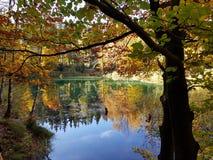 Colori il lago in foresta all'autunno fotografia stock libera da diritti