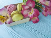 colori il macaron in una scatola su un fondo di legno blu, fiore di alstroemeria della confetteria Fotografia Stock Libera da Diritti