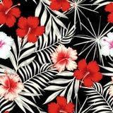 Colori l'ibisco sui precedenti senza cuciture delle foglie bianche nere royalty illustrazione gratis