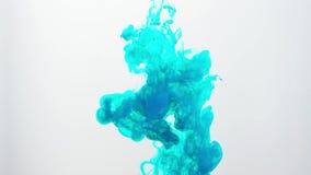 Colori l'inchiostro che si muove in acqua su fondo bianco Inchiostro acrilico che turbina in acqua che crea le nuvole astratte Sp stock footage