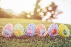 Colori le uova su erba verde con il bokeh della sfuocatura e il backgroun di luce solare Fotografia Stock Libera da Diritti