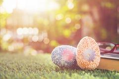 Colori le uova su erba verde con il bokeh della sfuocatura e il backgroun di luce solare Immagini Stock