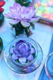 Colori luminosi e bei dei fiori di plastica Fotografia Stock Libera da Diritti