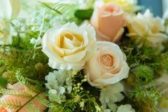 Colori luminosi e bei dei fiori di plastica per la decorazione Immagini Stock