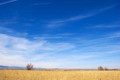 Colori luminosi sulla prateria del Colorado Fotografia Stock