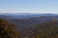 Colori lungo Ridge Parkway blu, Nord Carolina di caduta Fotografie Stock Libere da Diritti
