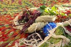 Colori naturali del tappeto Fotografia Stock