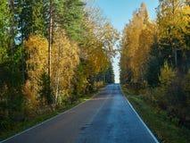Colori pittoreschi di caduta e bella strada campestre di autunno in Finlandia fotografie stock libere da diritti