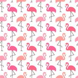 Colori rosa differenti dei fenicotteri grafici senza cuciture del modello royalty illustrazione gratis