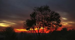 Colori vivi dei tramonti himalayani India immagine stock