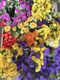 Coloridamente flor Foto de Stock