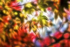 colorido Imagenes de archivo