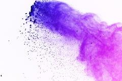 Colorido da explosão do pó no fundo branco Pó colorido Imagens de Stock
