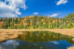 Colorido de otoño Imagen de archivo