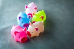 Colorido de porcos do brinquedo com espaço da cópia Fotografia de Stock