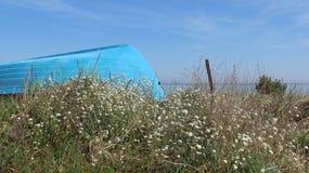 Colorido de primavera por la playa báltica Imágenes de archivo libres de regalías