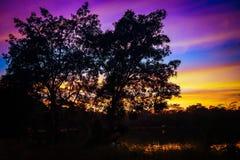 Colorido do céu com as nuvens na floresta de nivelamento da silhueta em Tailândia imagem de stock royalty free