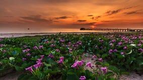 Colorido en puesta del sol Imagen de archivo libre de regalías