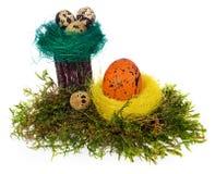 Colorido pintado à mão dos ovos da páscoa no ninho do pássaro, musgo da floresta, Fotografia de Stock