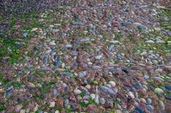 Colorido seixos marrons, azuis, claros, escuros do mar apresentados na trilha Fotos de Stock Royalty Free