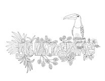 Coloring for an adult bird toucan. Exotic tropical jungle plants. Coloring for adult bird toucan. Exotic tropical plants Stock Image