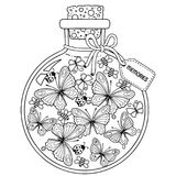 Vector Coloring book for adults. A glass vessel with memories of summer. A bottle with bees, butterflies and ladybugs. Coloring for adults. Vector Coloring book stock illustration