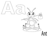 Coloring Alphabet for Kids,A. Ant Royalty Free Stock Photo