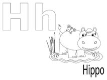 Coloring Alphabet for Kids,H. Hippopotamus royalty free illustration