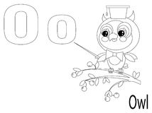 Coloring Alphabet for Kids,O Stock Photos