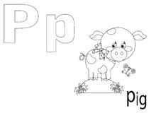 Coloring Alphabet for Kids,P. Pig Royalty Free Stock Image