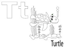 Coloring Alphabet for Kids,T. Turtle Stock Photo