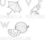 umbrella bird coloring page - animal alphabet with umbrella bird royalty free stock