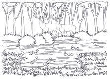 coloring Animali che vivono nella foresta Immagine Stock