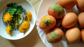 Coloring beautiful Easter eggs with leaf and flower pattern Stock Photography